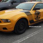 Mustang 818 Headrush bien en vu à St-Hyacinthe